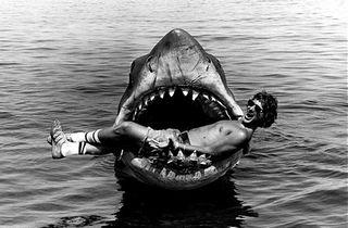Spielberg dans les mâchoires de Bruce
